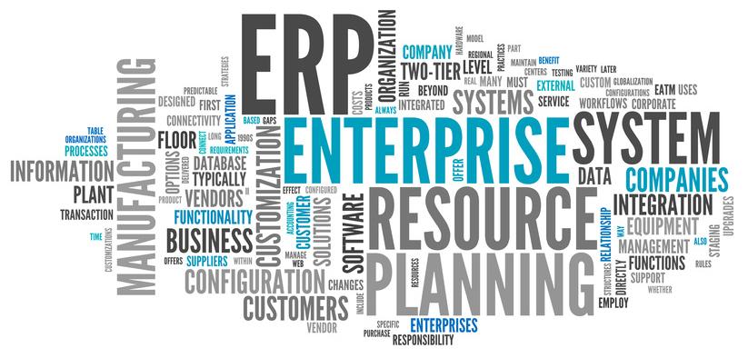 ERP Wordle